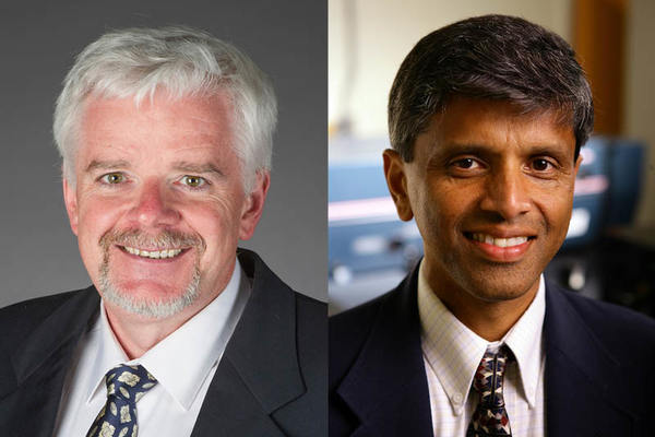 Notre Dame faculty named among the top one percent of highly cited researchers